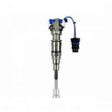 BOSCH 0445110256 injector